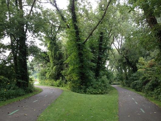 Monday morning run at the towpath